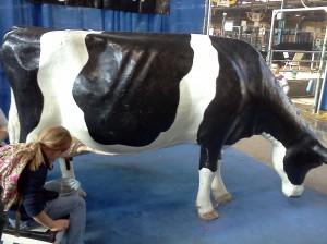 Farm Show, Cow, Milk