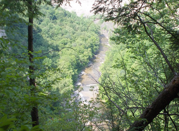 Hiking, River, Trees, Overlook, Nature